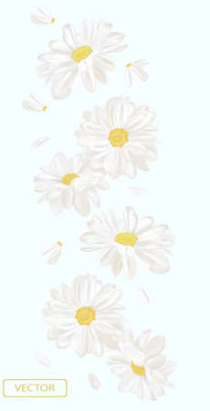 Delicate flower chamomile. Blooming white chamomile, design for cosmetic product, tea, perfume, essential oil. Beautiful chamomile background. Banner for you health products. 3d vector illustration.