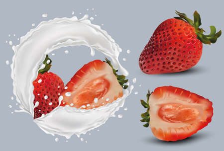 Realistic strawberry on grey background. Whole strawberries and slice with strawberries in milk splashes and drops. Illustration for your poster, banner, natural product. 3D vector illustration. Ilustracja