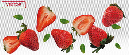 Realistic strawberry on transparent background. Whole strawberries, sliced strawberries with with green leaves. Illustration for your poster, banner, natural product. 3D vector illustration. Zdjęcie Seryjne