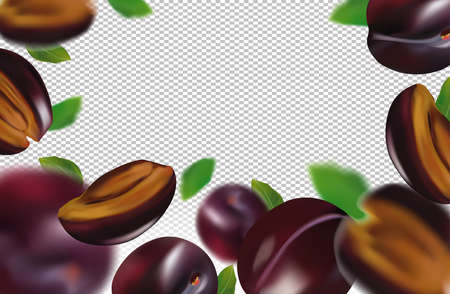 Realistic plum on transparent background. Whole plum, sliced plum with green leaves. Illustration for your poster, banner, natural product. 3D vector illustration.