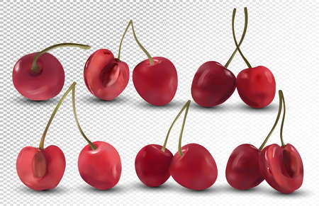 Fresh Cherries on transparent background. Collection ripe red cherries. Nature product. 3D realistic berries. Vector illustration.