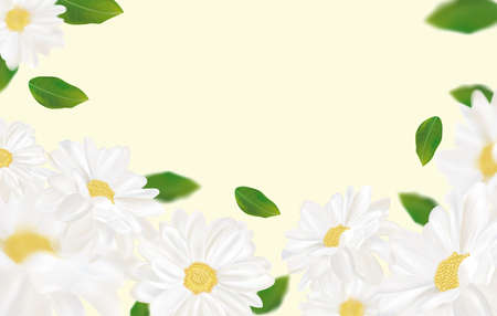 Beautiful chamomile background for your text or banner. White blooming chamomile. Banner for beauty product, perfume or medicine. 3d chamomile on yellow background. Vector illustration