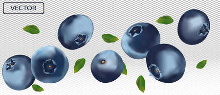 3D blueberry with green leaf. Juicy ripe berry blueberries on a transparent background. Fresh wild summer berry. Illustration for your poster, banner. Vector illustration Ilustracja