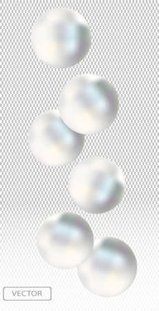 Shiny white sea pearl on transparent background. Beautiful jewelry for women. Illustration for your poster, banner. Vector illustration.