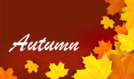 Autumn banner with yellow leaves. Autumn design for your poster, card, label. 3D realistic vector illustration. 矢量图像