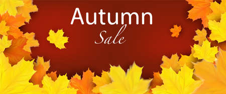 Offer Autumn banner with yellow maple leaves. Autumn Sale design for your poster, card, label. 3D vector.