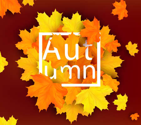 Banner with orange Autumn leaves. Bright Autumn design for your poster, card, label. Seasonal lettering. 3D realistic vector illustration. Vector illustration 矢量图像