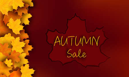 Special Offer Autumn banner with yellow maple leaves. Autumn Sale, design for your poster, card, label. 3D vector illustration.