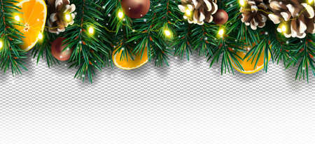Realistic Christmas decor with of pine branches, pine cone, orange, sparkles and Christmas light garland on transparent background. Christmas illustration for your poster, banner, cards. Vector