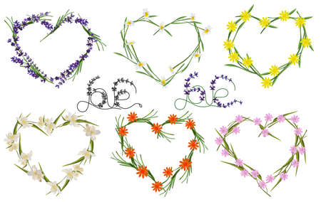Floral hearts collection, made from flower lavender, chamomile, jasmine. Spring flower. Love concept. Wreath of wildflowers. Vector illustration.