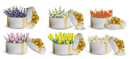 Floral collection in the gift box. Flower lavender, chamomile, jasmine. Spring flower. Love concept. Vector illustration.