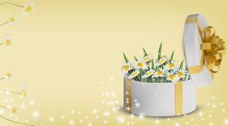 Floral collection chamomile in the gift box. Spring flower. Love concept, Mothers Day,. Illustration for your design. Vector illustration.