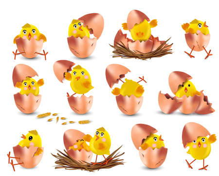 Collection of cute yellow chickens. Funny cartoon chickens for your design. Easter chicks on white background. Chicken hatching from an egg. Vector illustration. Ilustracja