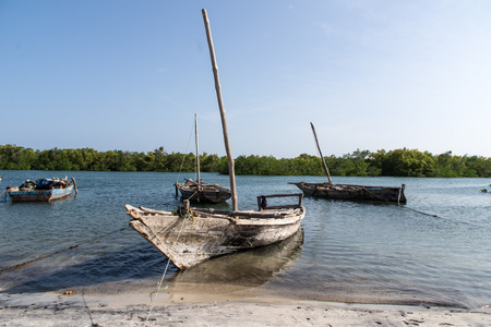 tanga: Wooden fishing boats in a village in Tanzania, Africa