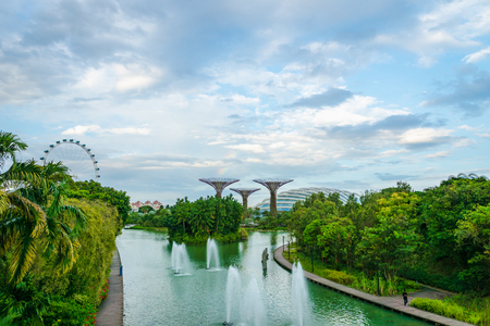Gardens by the bay with the Supertree Grove in Singapore near Marina Bay Sands hotel
