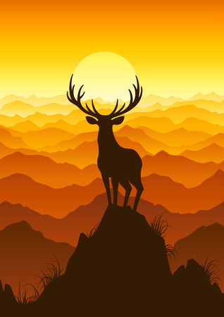 Deer at sunset. Vector illustration.