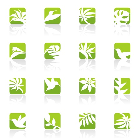 monstera: Nature.logo template set. Elements for design. Icon set.