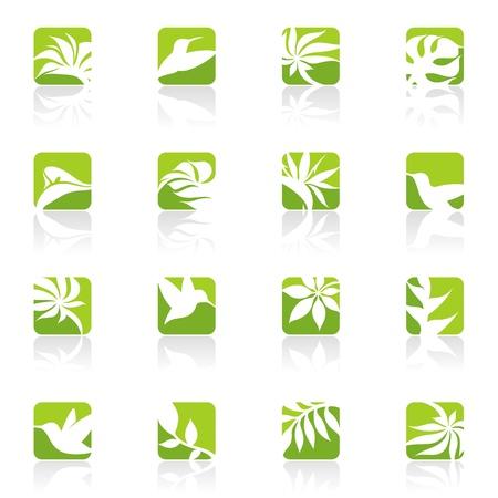 strelitzia: Nature.logo template set. Elements for design. Icon set.