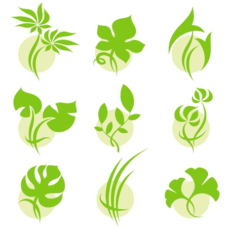 vegetate: Leaves. Vector logo template set. Elements for design. Icon set.
