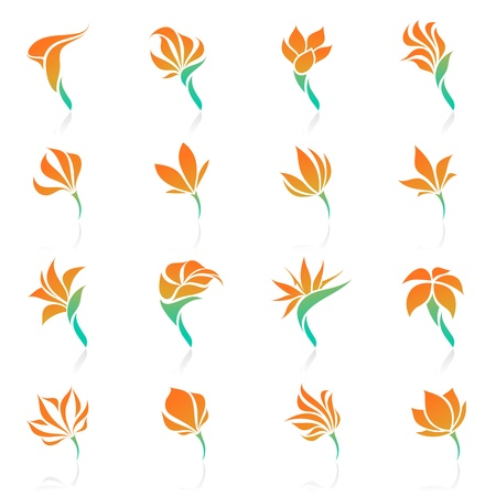 Tropical flowers. Vector logo template set. Elements for design. Icon set.