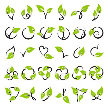 Bladeren. Vector logo sjabloon set. Elementen voor het ontwerp. Icon set. Logo
