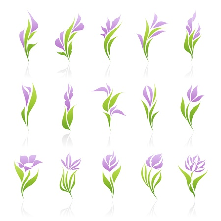 gladiolus: Flowers. Vector logo template set. Elements for design. Icon set.