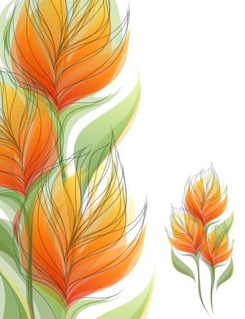 vriesea: Fiori. Sfondi colorati. Illustrazione vettoriale.