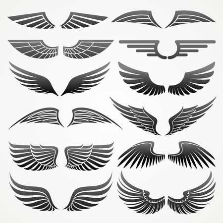 logos design: Wings. Elements for design. Vector illustration.