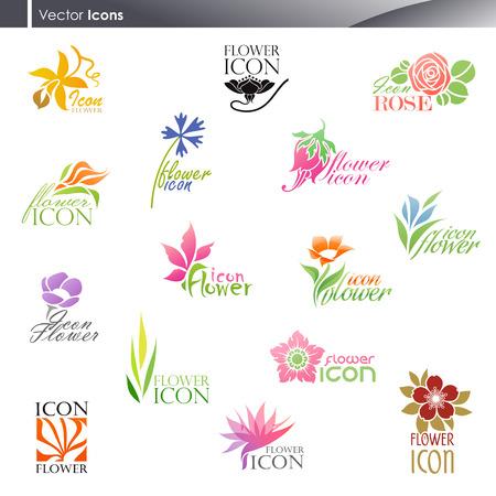 flor loto: Flores. Vector logo plantilla de conjunto. Elementos para el dise�o. Conjunto de iconos.