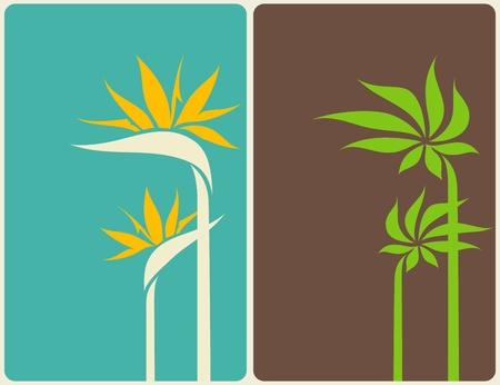 ave del paraiso: Ave del para�so de las flores y hojas de palmera. Ilustraci�n del vector. Vectores