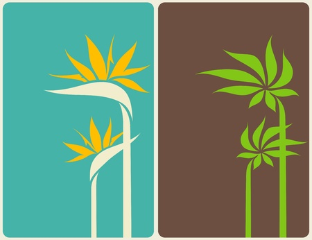 strelitzia: Bird of paradise flower and palm tree leaf. Vector illustration. Illustration