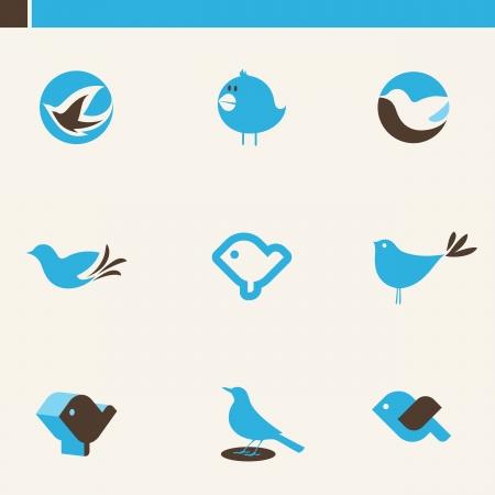 aves caricatura: Juego de p�jaros lindos. Elementos para el dise�o. Icono de conjunto. Vectores