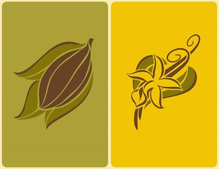 Grano de cacao y la vainilla con las vainas de flores. Ilustración del vector.