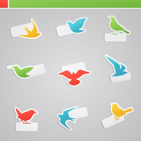 Set of multicolored birds with tags. Vector logo template set. Illustration