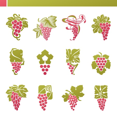 Red grape with green leaf   Vector