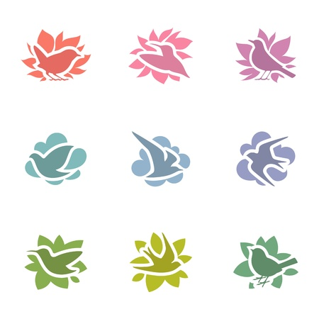 thrush: Collection of multicolored birds logo template set  Elements for design