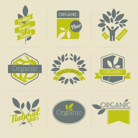 org�nico: Org�nicos etiquetas retro, escudos y otros elementos de dise�o con hojas. Vector ilustraci�n.