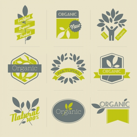 Organic retro labels, badges and other design elements with leaves  Vector illustration