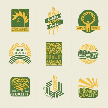 mazorca de maiz: Etiquetas de trigo e insignias. Conjunto de plantillas del logotipo. Elementos para el dise�o.