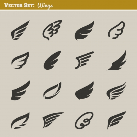 Wings  Set of design elements  Vector illustration  Illustration