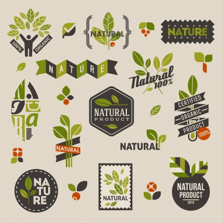 Nature labels and emblems with green leaves  Set of vector design elements