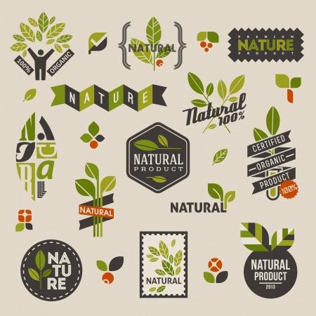 Nhãn tự nhiên và biểu tượng với màu xanh lá Tập hợp các yếu tố thiết kế vector Hình minh hoạ