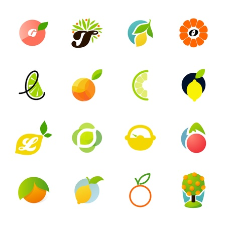 Familia de los cítricos - limón, naranja, lima, mandarina, pomelo. Elementos para el diseño. Ilustración de vector