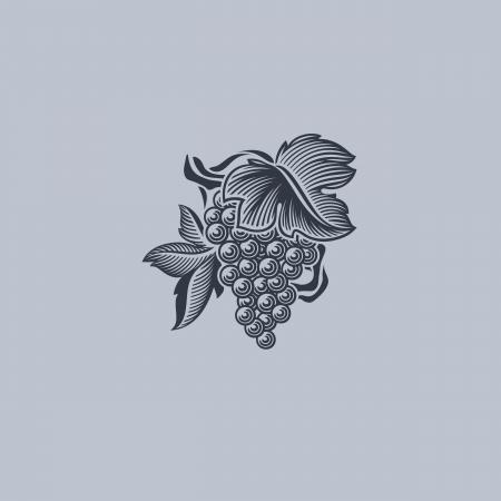 Grape with leaf - Element for design - Vector illustration