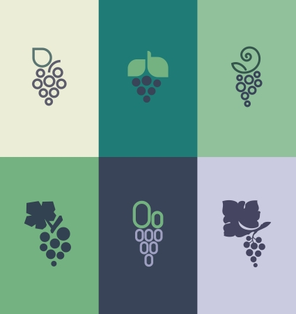 purple grapes: Grape with leaf   Illustration