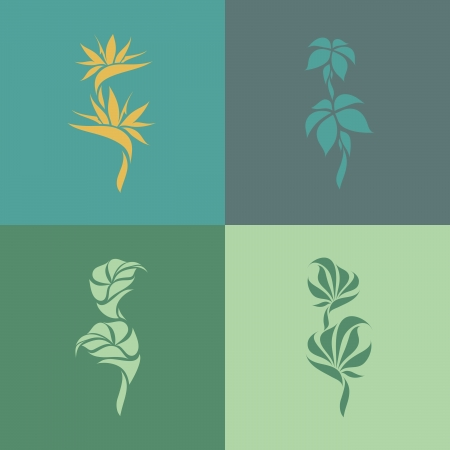 ave del paraiso: Las plantas tropicales - Conjunto de elementos de diseño - ilustración vectorial