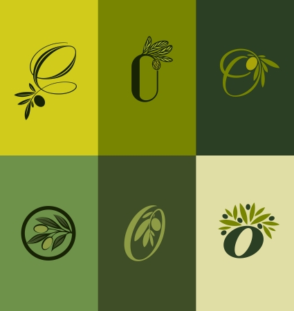 olivo arbol: Oliva rama de un árbol Conjunto de etiquetas - ilustración vectorial