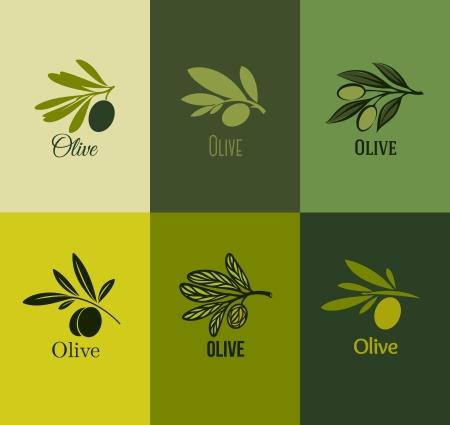 olijf: Olijftak - Set van labels - Vector illustratie