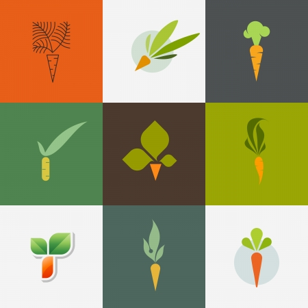 carrot: Carrot - Set of decorative design elements - Vector illustration