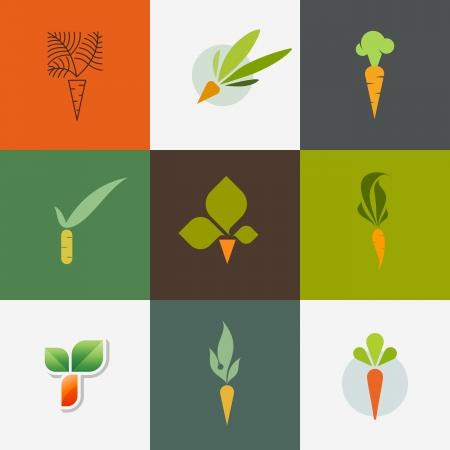 zanahorias: Zanahoria - Conjunto de elementos de diseño de decoración - ilustración vectorial Vectores